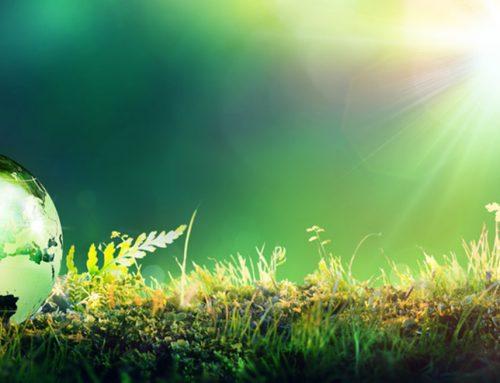 Parution de l'ISO 14001 version 2015